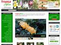 Tropicaflore : spécialiste de la vente en ligne de plantes exotiques, tropicales et de plantes rares