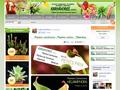 Karnivores : divers espèces de plantes carnivore ou exotique et matériel pour les cultiver