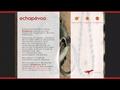 Echapevoo : séjours sur mesure et prestigieux pour les particuliers et les entreprises - team building en Tunisie