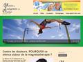 Champs Magnetiques Pulsés : traitement de l'arthrose, les rhumatismes ou soulager un mal de dos