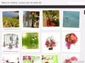 Mise en Scène 66 : art floral en Pyrénées Orientales