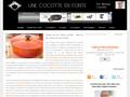 Une Cocotte En Fonte : cocottes minute de toutes marques
