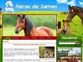 Haras de Sames : vente d'étalons à Orthevielle dans les Landes