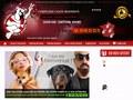Molosse Education : centre de dressage pour chien de garde en Ile de France