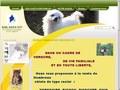 Dog's City : vente de chiots toute l'année - Montauban