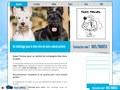 Super Toutou : toilettage pour chien à Colfontaine
