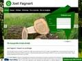 Joel Fagnart : travaux d'abattage à Ecaussines