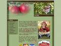 Verger st-joseph du lac - Cueillette et autocueillette de pommes