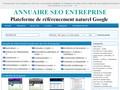 Annuaire de référencement organique de site internet professionnel qui monte