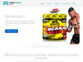Acides amines bcaa - nutrition sportive