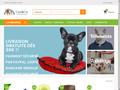 Canicie : animalerie en ligne