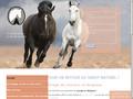 Parage de cheval en Belgique
