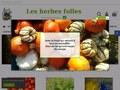 Les Herbes Folles : vente de légumes bio à Wavrin