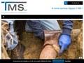 T.M.S. : aménagements extérieurs à Sambreville