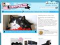 Plaques médailles gravées pour chien et chat
