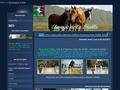 Elevage, achat et vente de chevaux de sport de la Treille à Royan