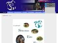 Selection �lite : �levage et vente de chevaux de sport