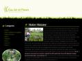 Eau Air et Fleurs : plante aquatique, carnivore et atypique - tillandsia, stévia et aloes vera