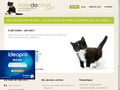 Nom de Chat : base unique de milliers de prénoms pour vos chatons - blog sur les chats
