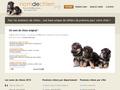 Nom de Chien : des milliers de noms de chiens listés par catégories, année et nombre de syllabes