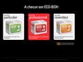 Eco Box : réduire sa consommation électrique pour particulier et professionnel - économie d'énergie