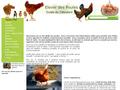 Les Poules : guide pour élever des poules et avoir des oeufs frais - conseils et informations