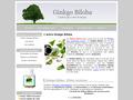 Ginkgo Biloba : aide a soulager les symptômes liés à une démence vasculaire ou dégénérative
