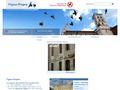 Pigeon Propre : répulsif et systèmes anti pigeons